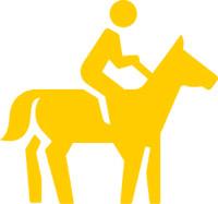 picto_course-poneys